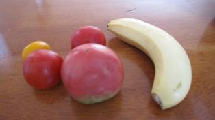 110724トマトを練習へ