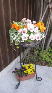 110416玄関のお花