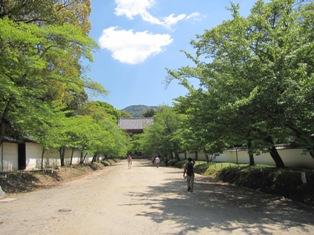 130428 醍醐寺