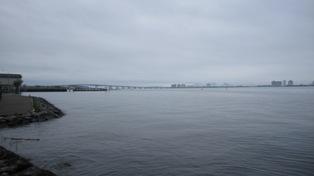 110528湖岸を散歩